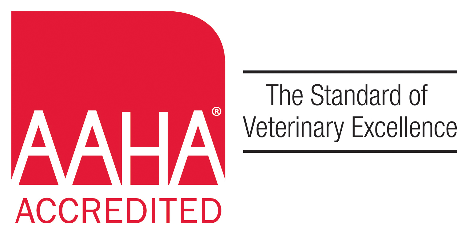 AAHA Accredited Pet Hospital - Family Pet Clinic of Redondo Beach